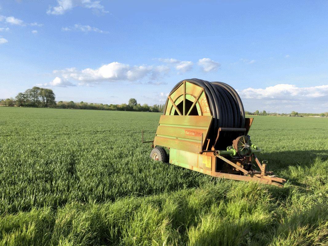 Mairegen wird sehnsüchtig herbeigesehnt – Milchviehbetriebe sorgen sich erneut um Futtervorräte für ihr Vieh