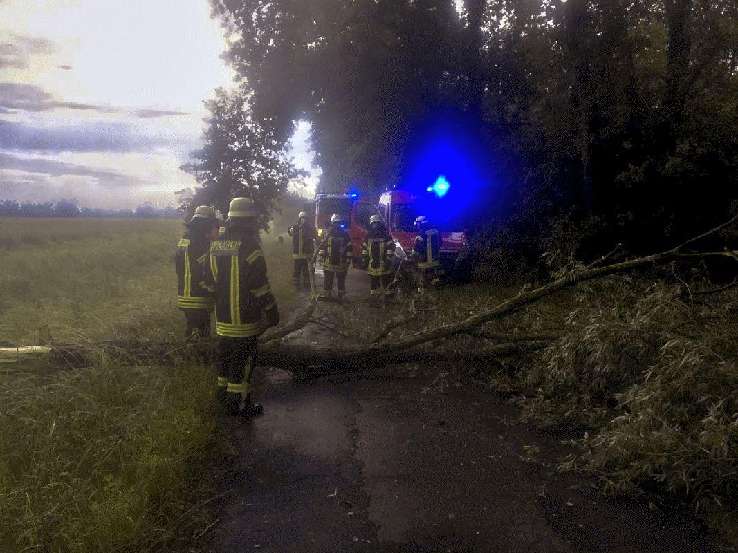 Größerer Ast versperrt Straße in Bröckel