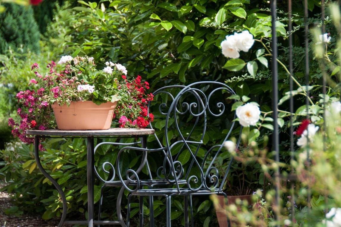 """Schöne Gärten bei der """"Offenen Pforte"""" besuchen"""