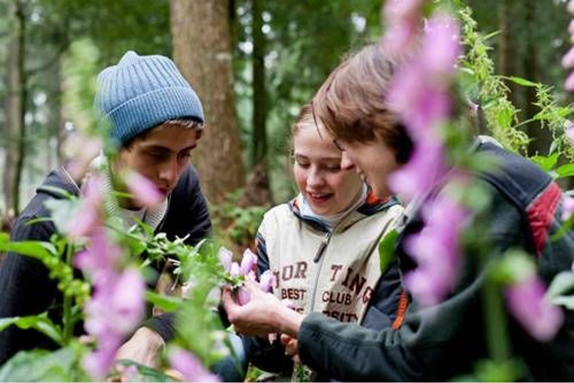 Waldtage in Siedenholz – Ferienprogramm für kleine Waldentdecker im August