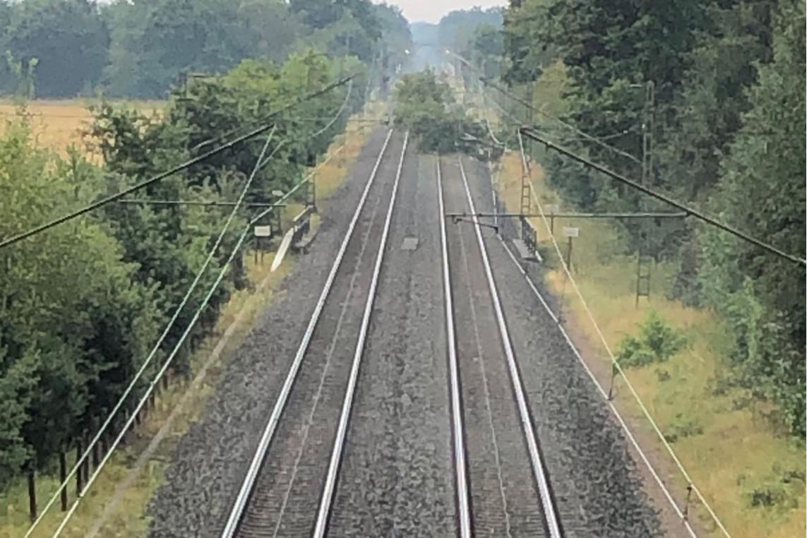 Statt Böschungsbrand umgestürzter Baum an der ICE Strecke Hannover-Celle