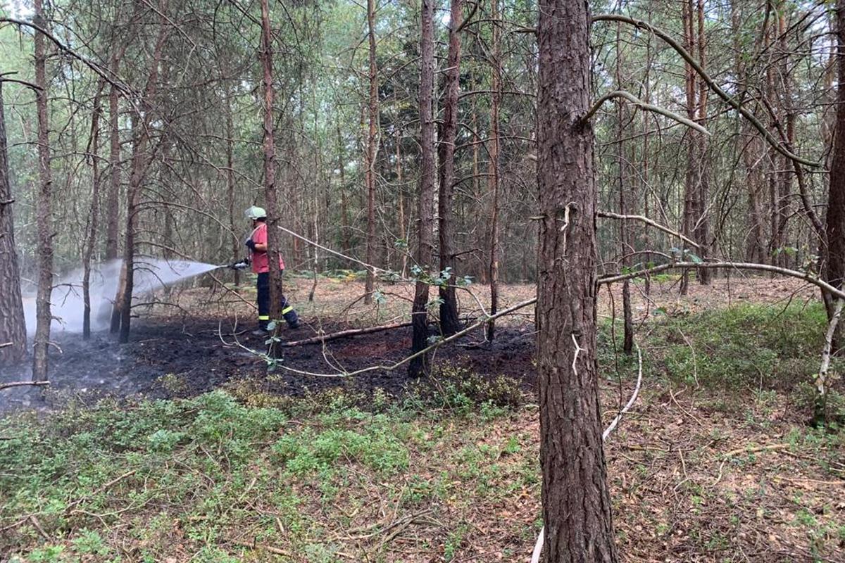 Waldbrand zwischen Belsen und Walle