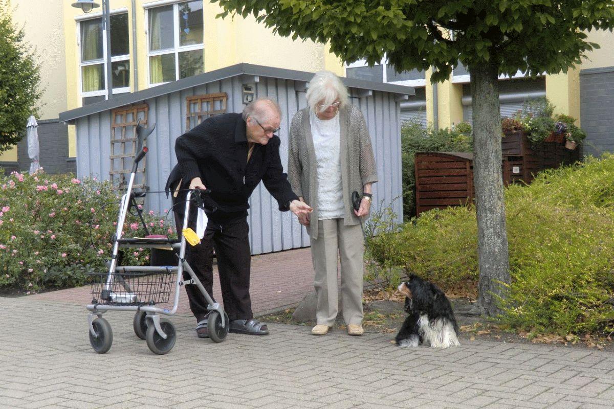 20 Jahre: Großes Jubiläum für das CMS Pflegewohnstift Franz-Guizetti-Park in Celle