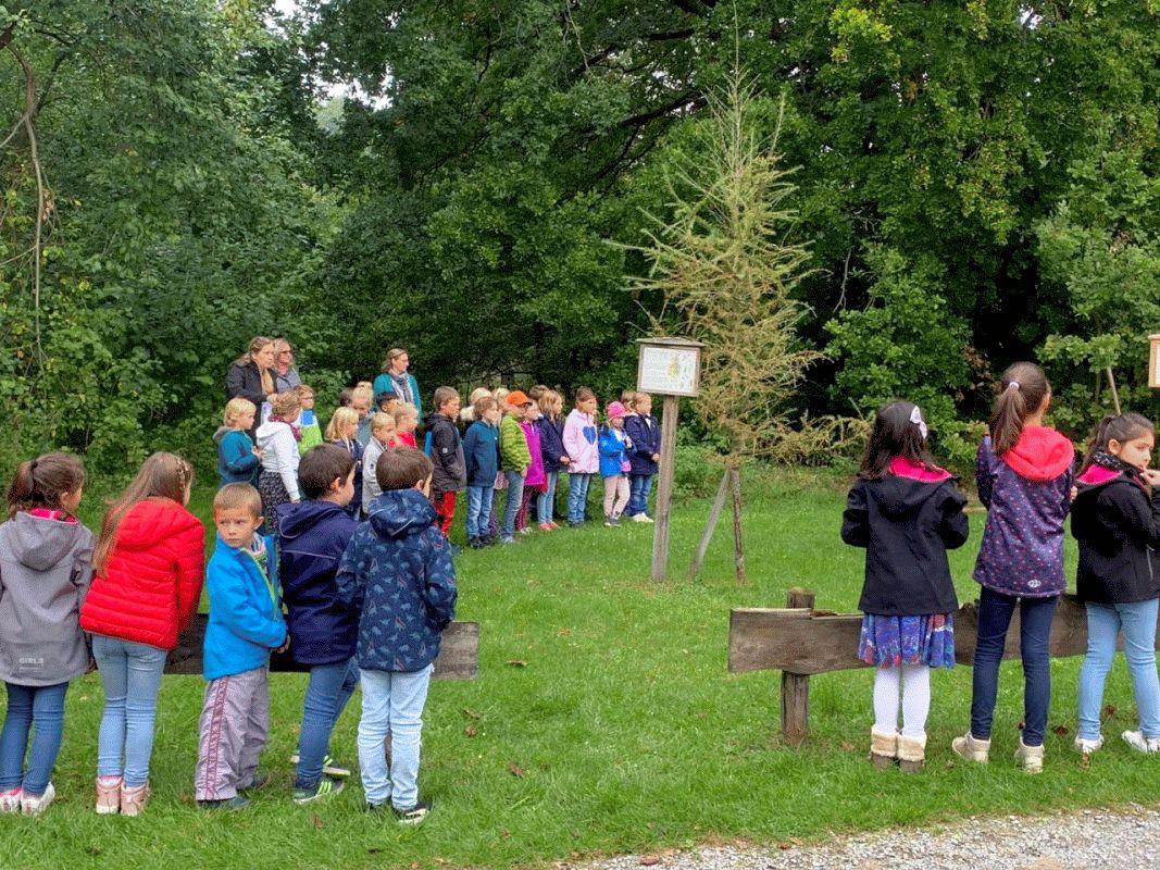 Baum des Jahres 2020 in Müden/Örtze gepflanzt
