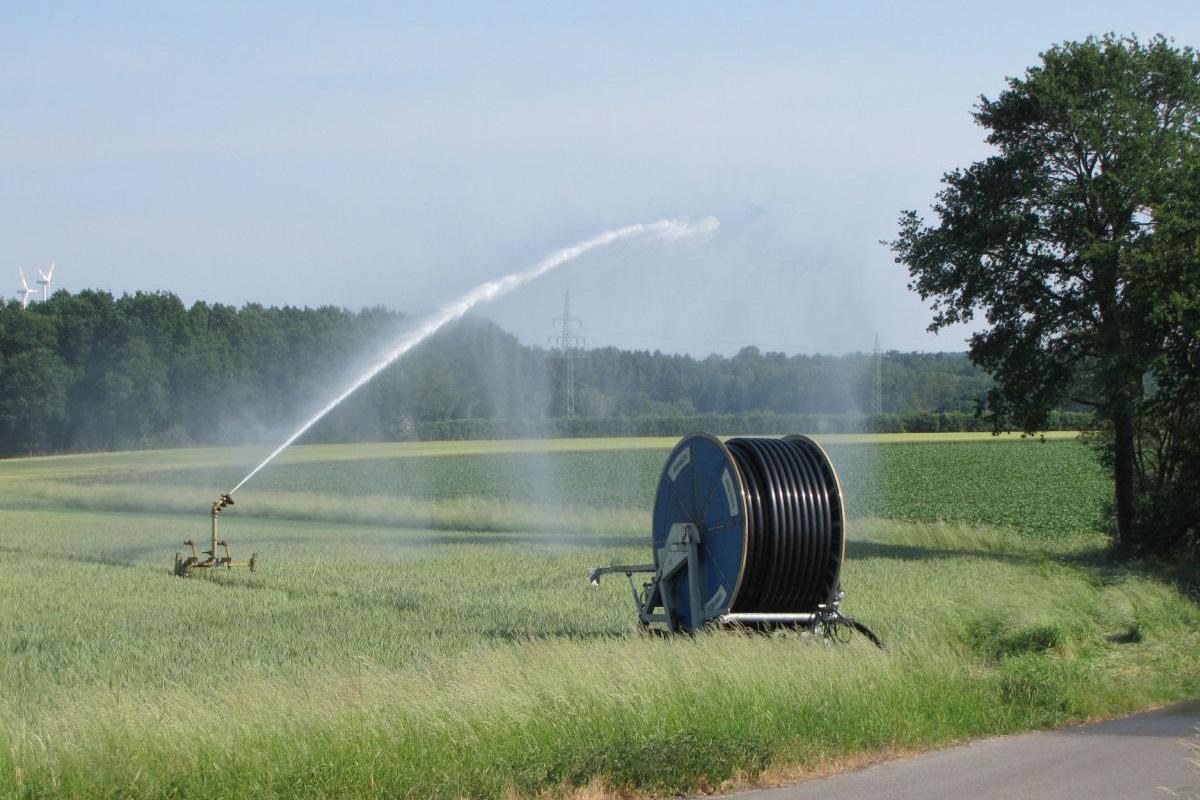 Genug Wasser für die Landwirtschaft – Führung in der Sonderausstellung