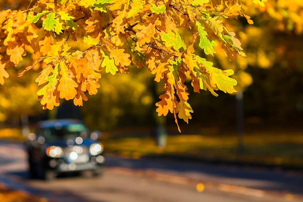 ADAC Prüftruck kommt nach Celle: Sicher durch den Herbst… Zeit für einen Fahrzeug-Check!
