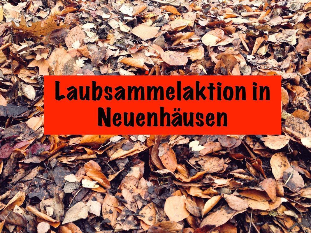 Laubannahme in Neuenhäusen