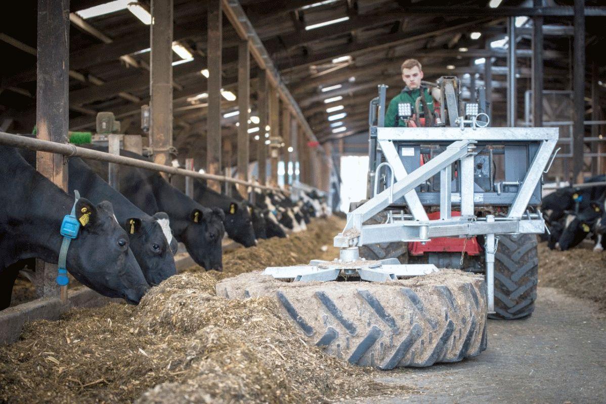 Niedersachsens Landwirtschaft zwischen Exportboom und tiefer Krise