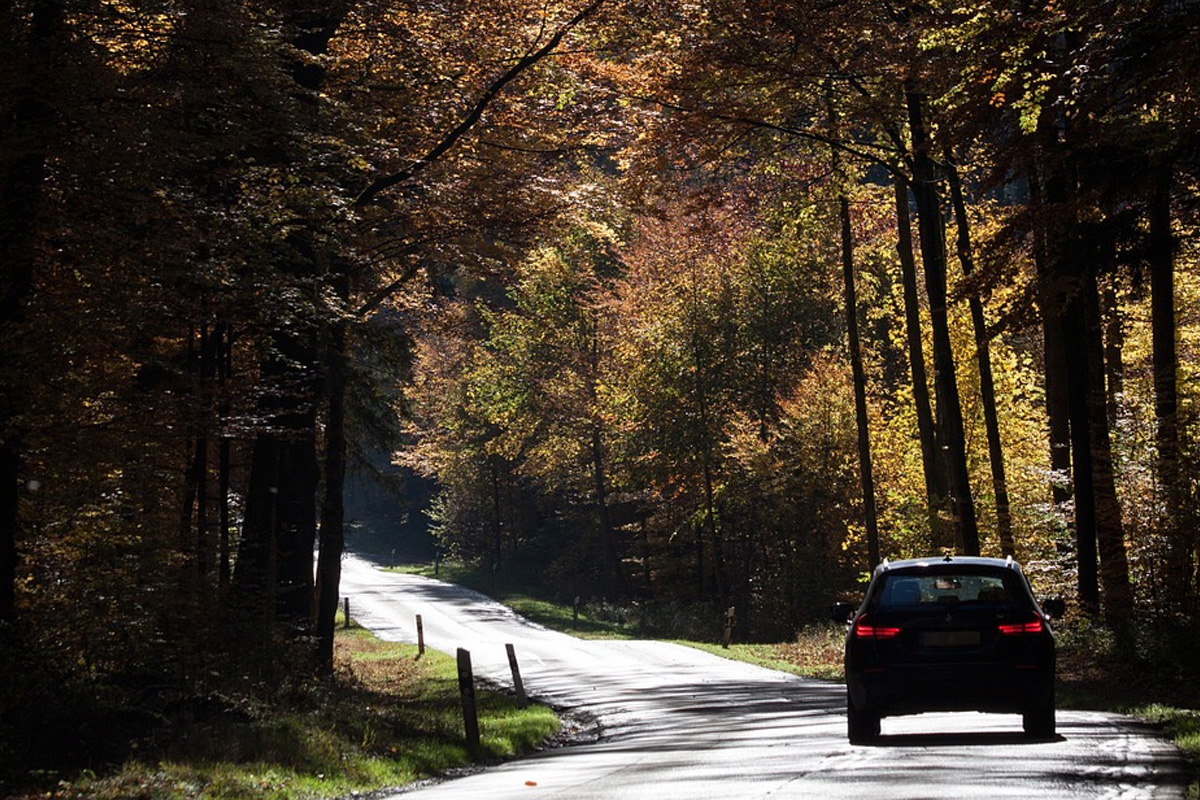 Servicetipps für Ihren PKW im Herbst