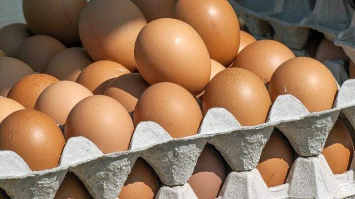 Eier sind in der Weihnachtsbäckerei sehr gefragt – Fast vier von zehn deutschen Eiern stammen aus Niedersachsen