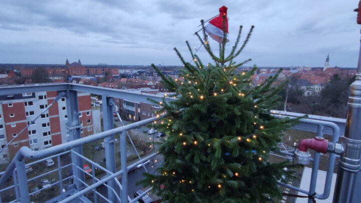 Weihnachtsbaum leuchtet über Celle