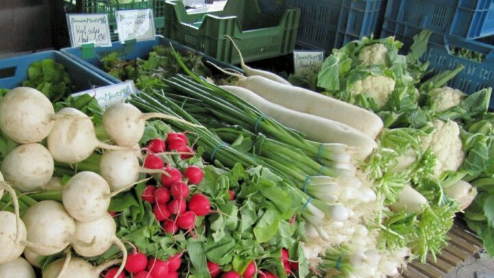 Bauern verkaufen ihre Ernte direkt in der Stadt – Corona verändert Kundenströme – Vorschriften garantieren Herkunft aus der Region
