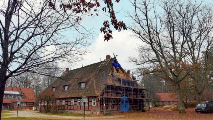 Giebel strahlt in frischem Reet – Dach des Hauses am Landtagsplatz teilweise erneuert