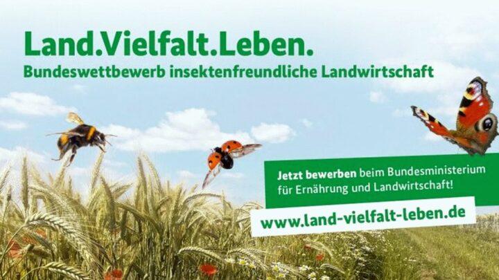 """Landwirte für eine insektenfreundliche Landwirtschaft – Bundeswettbewerb """"Land.Vielfalt.Leben"""" Bewerbungen bis zum 28. Februar 2021"""