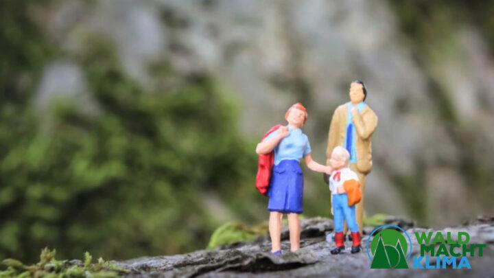 """Kampagne """"Wald macht Klima"""" will Niedersachsens Wälder zukunftsfit machen"""